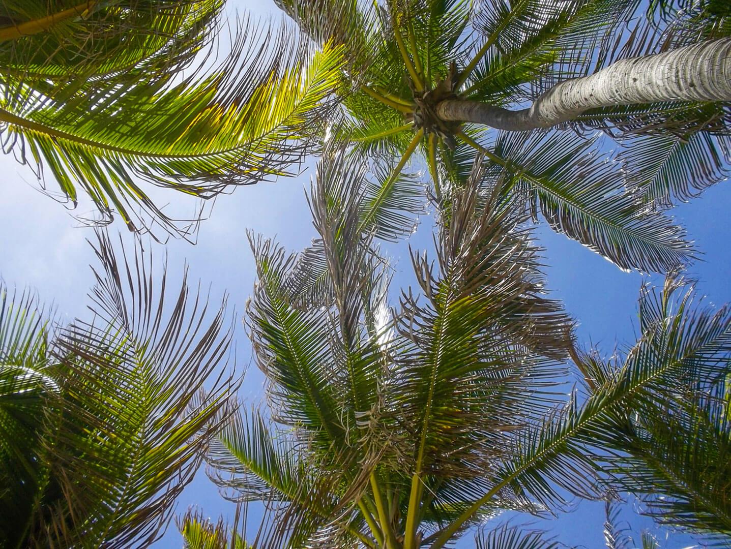 Fortaleza-Brazil-by-Polina-Paraskevopoulou-la-vie-en-blog-49