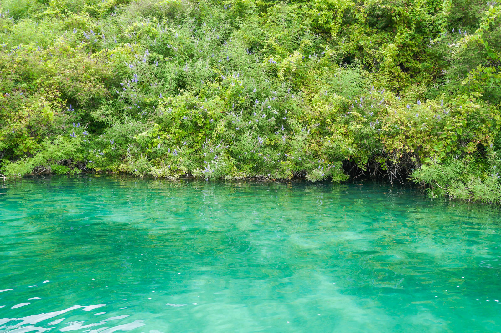 kourna-lake-crete-greece-la-vie-en-blog-all-rights-reserved-3