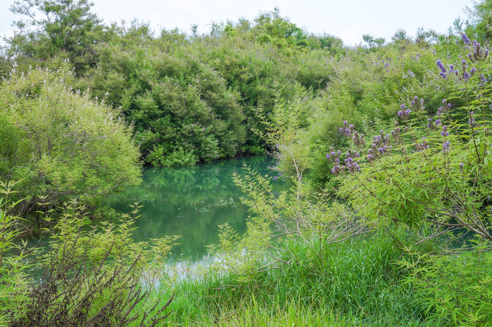 kourna-lake-crete-greece-la-vie-en-blog-all-rights-reserved