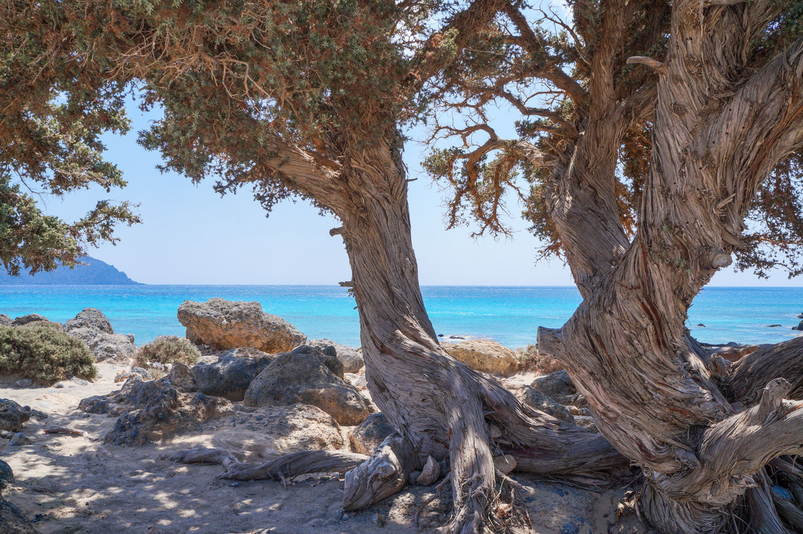 kedrodasos-crete-greece-la-vie-en-blog-all-rights-reserved-24