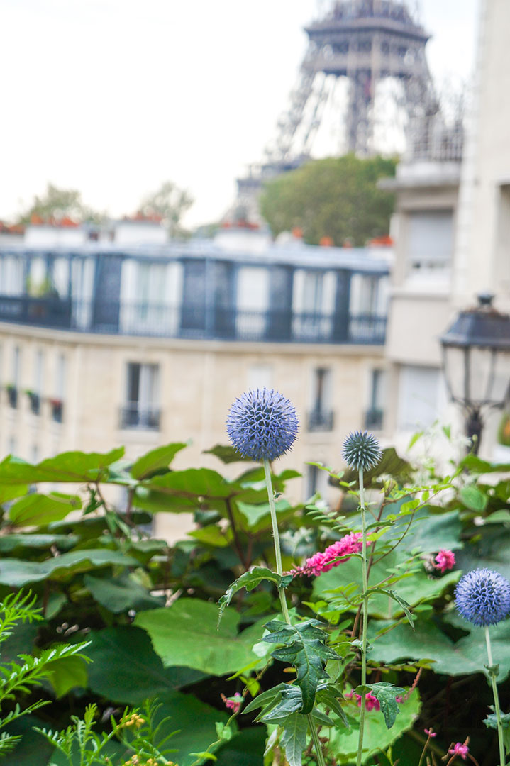 my-paris-fashion-week-diary-paris-by-polina-paraskevopoulou-all-rights-reserved-46