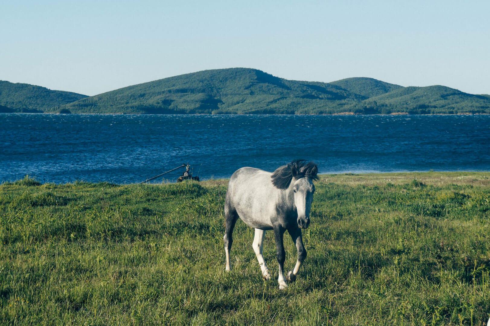 plastira-lake-la-vie-en-blog-all-rights-reserved-4