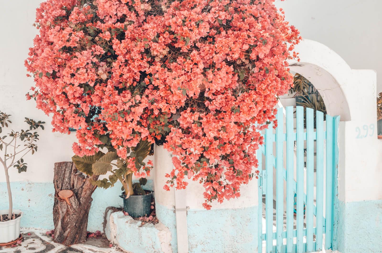 paros-cyclades-greece-la-vie-en-blog-all-rights-reserved-137
